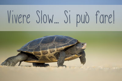 vivere-slow